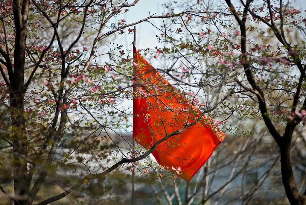 single orange flag CC